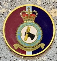 5131 Sqn Bomb Disposal Poker Chip
